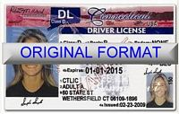Connecticut Fake ID With Hologram