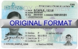 New Brunswick Fake ID