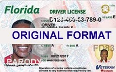 Florida Scannable fake id scannable fake identification buy fake ids and fake drivers license id Florida canada