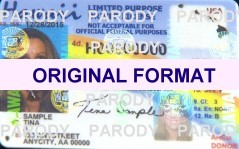 hawaii fake driver license scannable fake ids with holograms magnetic stip fake identification driver license