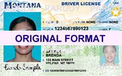 MONTANA FAKE IDS SCANNABLE FAKE MONTANA ID WITH HOLOGRAMS