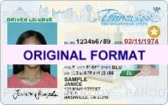 tennessee fake drivers license scannable with holograms